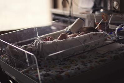 baby-2553563_1920